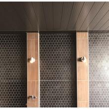 温浴施設向け天井・壁パネル バスパネル不燃 製品画像