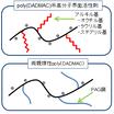 機能性ポリDADMACシリーズ 製品画像