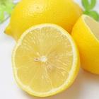 レモン汁 搾汁機 製品画像