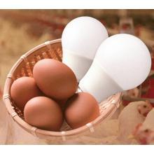 『ALEG Waterproof Lamp series』 製品画像