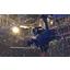 可視化ソリューション『DataMesh Live!』 製品画像