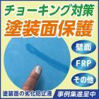 色彩再生!UVカット!塗装面保護する水性塗料『サエコート(R)』 製品画像