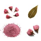 【菓子・食品原材料】上野忠の桜についてご紹介※サンプル進呈中 製品画像