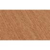 【クラティスエコ】カラーバリエーションについて 製品画像