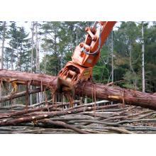 木材用グラップル 製品画像