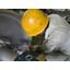 繊維加工機械の修理・改造サービス 製品画像