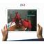 【企業教育向け】業務用パッケージソフト『AVRプラットフォーム』 製品画像