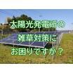太陽光発電所の雑草対策を請け負います|PVコンシェルジュ 製品画像