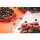 チョコレートリサイクル用 異物除去装置 製品画像