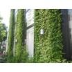 壁面緑化システム『緑化ウォール SR-P(パネル式)』 製品画像