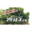 TOMATEC  総合微量要素肥料 『 アグリエースE号』 製品画像