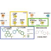 創薬支援ツール『CoLibri 3.0』 製品画像