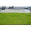 軽量緑化システム(折板屋根用) 製品画像