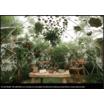 【施工事例集】植物による空間演出 製品画像