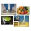 食品中の放射能測定業務のご案内 製品画像