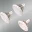 LED照明 高天井用LEDランプ [E39口金タイプ] 製品画像