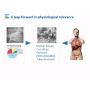 オルガノプレートを用いた3次元組織モデルと疾患モデル|無料動画 製品画像