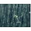 ステンレス鋼のガスセンサー部品 微細穴加工事例 製品画像