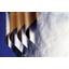保温・断熱材用表装材 ALGK『FSK1886B』 製品画像