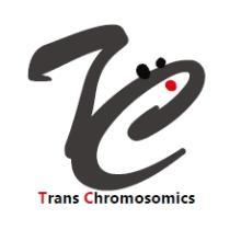 基盤技術『染色体工学』 製品画像