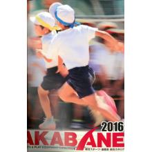 株式会社アカバネ『総合スポーツ・遊器具 総合カタログ』 製品画像