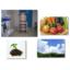 放射能測定業務のご案内 製品画像