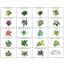 【全19種類の豊富なラインアップ】『ぴたっとグリーン』 製品画像