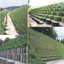 切土のり面 補強工法『マキセル 多段積み工法』 製品画像