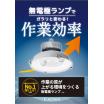 無電極ランプ『ELX』【水銀灯の代替に長寿命100,000時間】 製品画像
