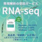 受託解析『RNA-seq』※初心者向け小冊子を進呈 製品画像