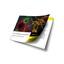 NEW!2020年9月発刊・ライブセル解析完全ガイドブック 製品画像
