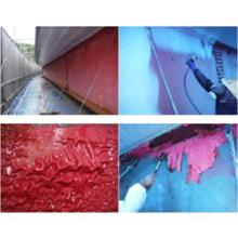 <NETIS VR登録>塗膜除去工法『パントレ工法』と関連製品 製品画像