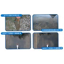 池等の水質浄化・除藻のご紹介 製品画像