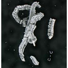 低温度熱膨張黒鉛 製品画像