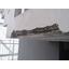 コンクリート再生工法『Sクリート・リストア工法』 製品画像