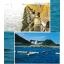 【火力EXPO2017出展】『くらげ流入防止網』(クラゲ対策) 製品画像