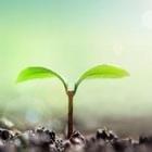 有機肥料製造用 遠心分離機 製品画像