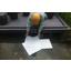 河川・湖で使う「アブラトール」のご紹介 製品画像