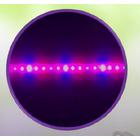 【耐虫性と抗酸化性向上】EZYGRO特製スペクトルR-B-UV 製品画像