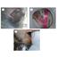 【課題解決事例】水質汚濁防止法に基づいた排水管設備の定期点検 製品画像