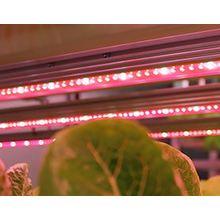 LED照明『AGLIGHT』 製品画像
