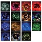 イルミネーションライトアップ演出照明2芯100球LEDストリング 製品画像