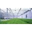 植物育成用赤外線カットガラス『アグリガラス』 製品画像