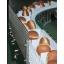 プラスチックコンベア『製パン業界向け搬送ベルト&チェーン』 製品画像
