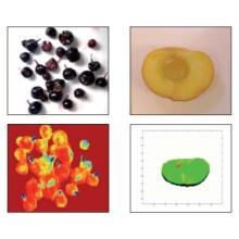 食品用異物選別機(近赤外線ソーター) 製品画像