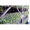 壁面緑化システム『緑化ウォールシリーズSR-F(メッシュ式)』 製品画像