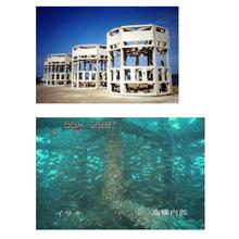 魚礁・増殖礁の基礎知識資料 製品画像