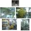 塗装設備の設計製作/自動車生産設備 製品画像