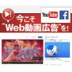 認知度向上企業広告等に 動画広告配信管理サービス「PR-PRO」 製品画像