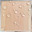 木材液体ガラス塗料『抗菌ウッドガラスコーティング』檜風呂改修工法 製品画像